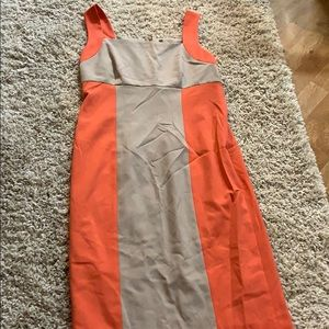 NWOT Marc New York sz 12 stretchy sexy dress